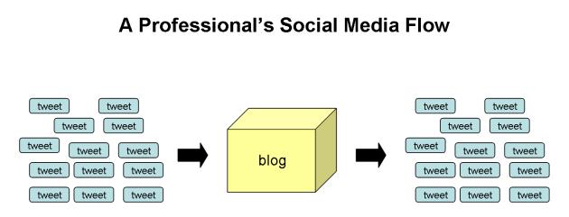 professionals-social-media-flow